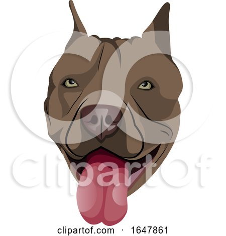 Pit Bull Dog Face by Morphart Creations