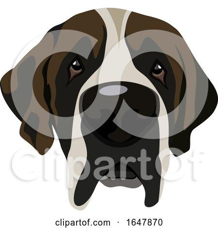 Saint Bernard Dog Face by Morphart Creations