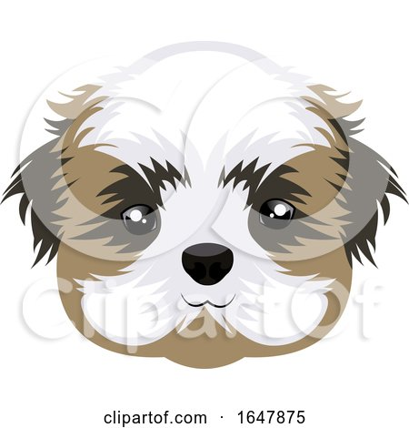 Shih Tzu Dog Face by Morphart Creations