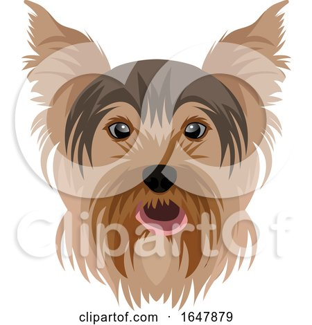 Yorkie Yorkshire Terrier Dog Face by Morphart Creations