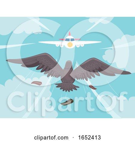 Bird Air Plane Collision Illustration by BNP Design Studio