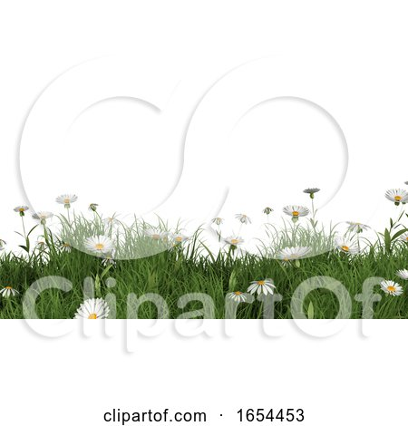 3D Landscape with Daisies and Buttercups by KJ Pargeter