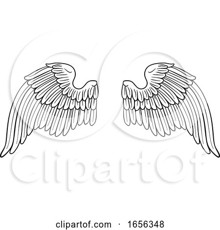 Wings Angel or Eagle Pair by AtStockIllustration