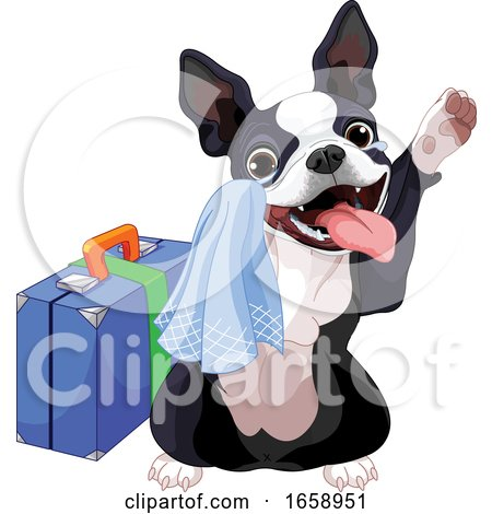 Cute Boston Terrier Dog Traveling and Waving Goodbye by Pushkin