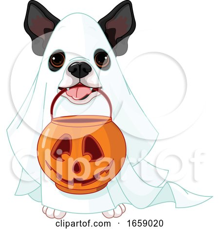 Cute Halloween Boston Terrier in a Ghost Costume by Pushkin