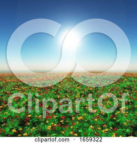 3D Landscape of a Poppy Field by KJ Pargeter