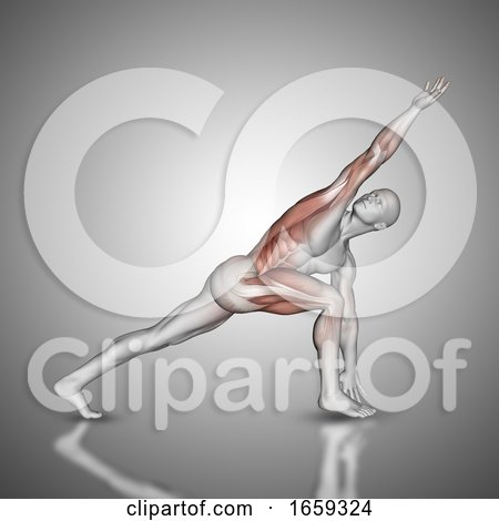 3D Male Figure in Revolved Side Angle Pose with Muscles Used Highlighted by KJ Pargeter