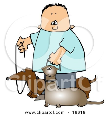 Little Caucasian Boy Walking His Small Weiner Dog, A Dachshund, And His Pet Ferret On Leashes Clipart Image Graphic by djart