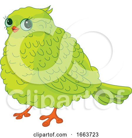 Cute Chubby Green Bird by Pushkin