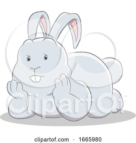 Gray Bunny Rabbit by cidepix