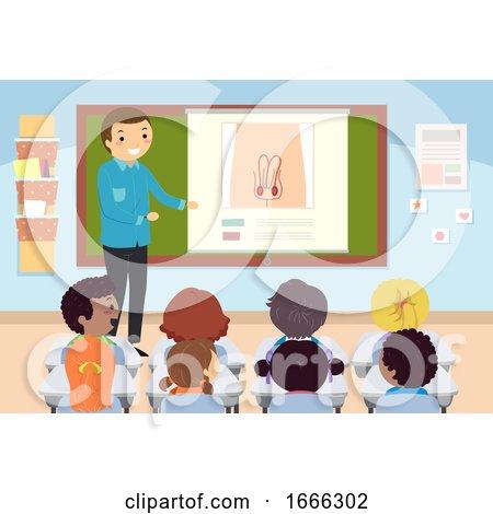 Stickman Kids Teacher Sex Education Male Organ by BNP Design Studio