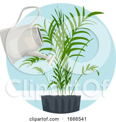 Household Chores Water Indoor Plant Illustration by BNP Design Studio