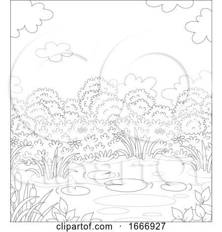 Pond Background by Alex Bannykh
