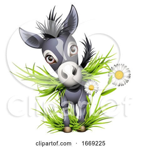 Cute Grey Donkey Eating Grass by Oligo