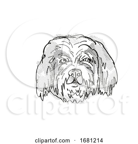 Cavachon Dog Breed Cartoon Retro Drawing by patrimonio