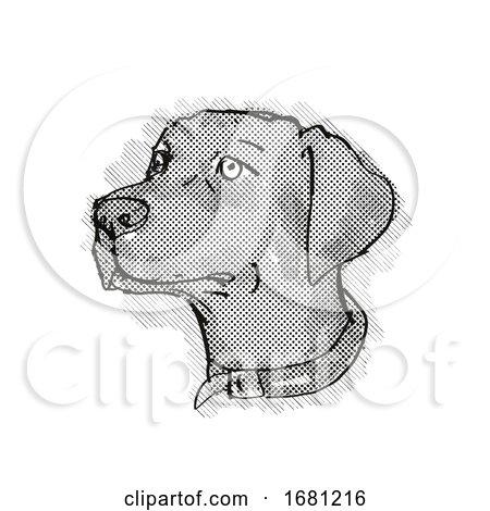 Chesapeake Bay Retriever Dog Breed Cartoon Retro Drawing by patrimonio