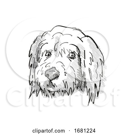 Goldendoodle Dog Breed Cartoon Retro Drawing by patrimonio