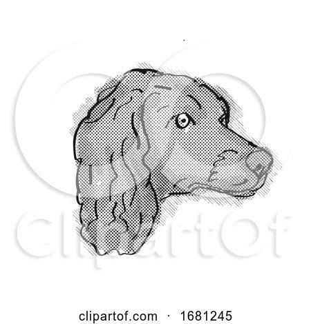 Boykin Spaniel Dog Breed Cartoon Retro Drawing by patrimonio