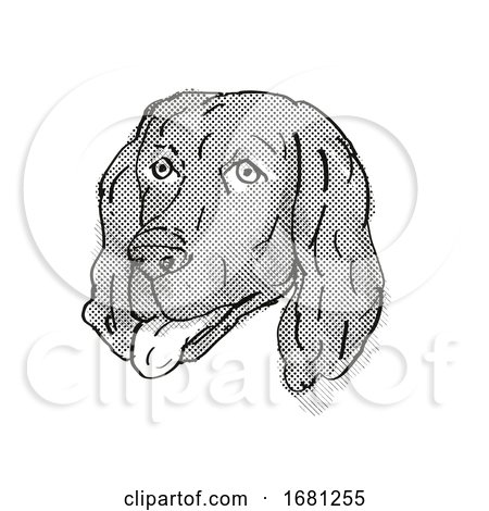 Flat-Coated Retriever Dog Breed Cartoon Retro Drawing by patrimonio