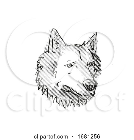 Goberian Dog Breed Cartoon Retro Drawing by patrimonio