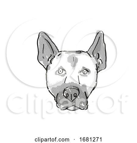 Belgian Malinois Dog Breed Cartoon Retro Drawing by patrimonio