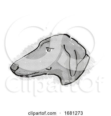 Azawakh Dog Breed Cartoon Retro Drawing by patrimonio