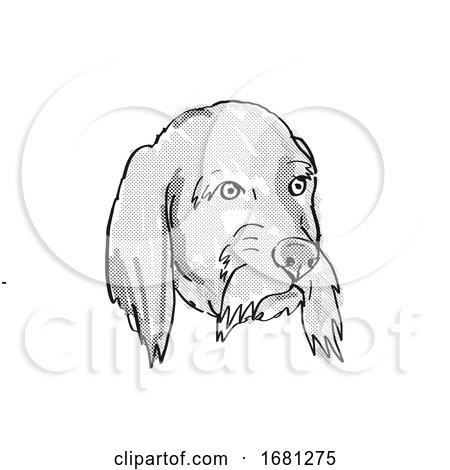 Basset Fauve De Bretagne Dog Breed Cartoon Retro Drawing by patrimonio