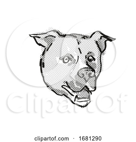 American Staffordshire Terrier Dog Breed Cartoon Retro Drawing by patrimonio