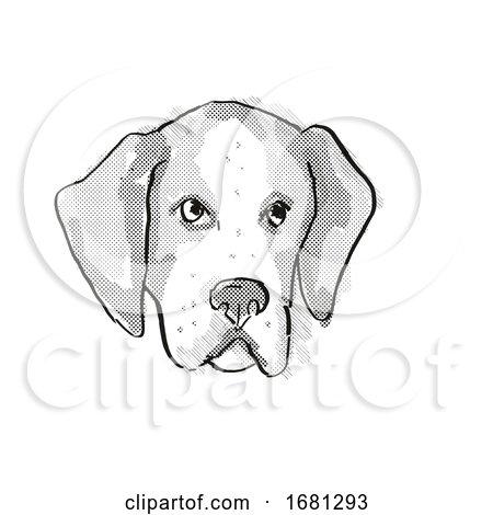 American Foxhound Dog Breed Cartoon Retro Drawing by patrimonio