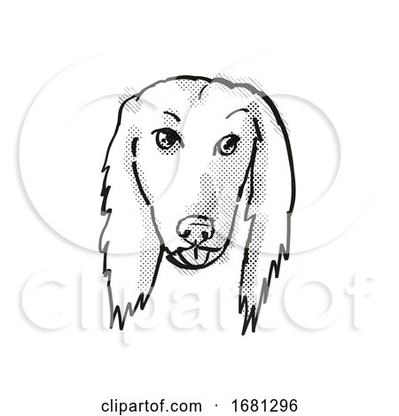 Afghan Hound Dog Breed Cartoon Retro Drawing by patrimonio