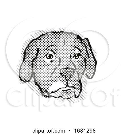 Afador or Afghan Lab Dog Breed Cartoon Retro Drawing by patrimonio