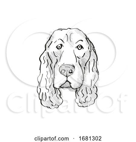 Field Spaniel Dog Breed Cartoon Retro Drawing by patrimonio