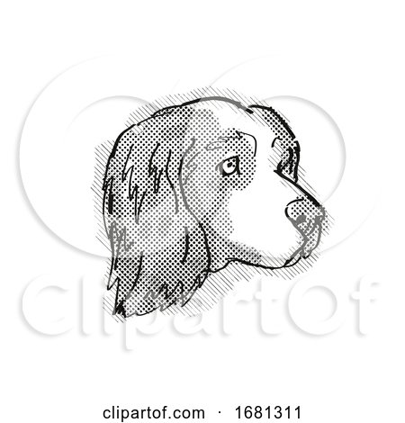 Clumber Spaniel Dog Breed Cartoon Retro Drawing by patrimonio