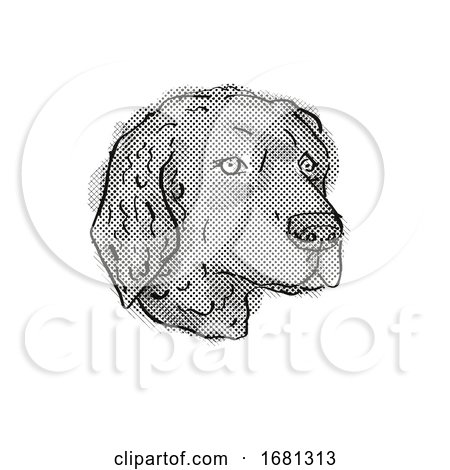 Curly-Coated Retriever Dog Breed Cartoon Retro Drawing by patrimonio