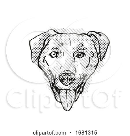 Chinook Dog Breed Cartoon Retro Drawing by patrimonio