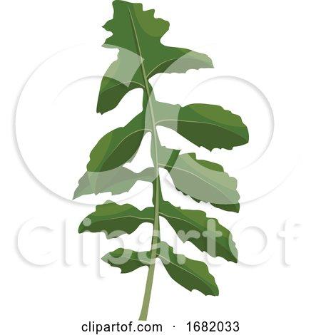 Green Ruccola Leaf by Morphart Creations