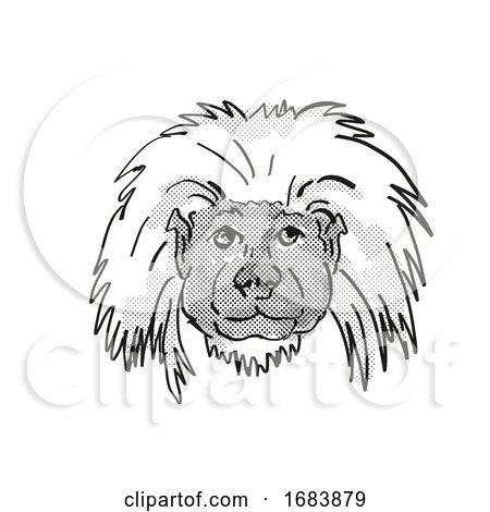 Cottontop Tamarin Endangered Wildlife Cartoon Retro Drawing by patrimonio