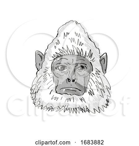 Sri Lankan Gray Langur Monkey Cartoon Retro Drawing Posters, Art Prints
