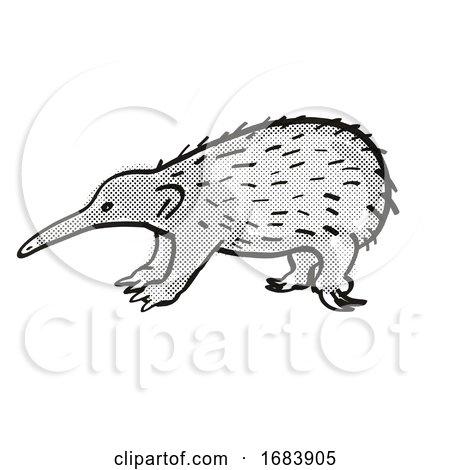 Western Long-beaked Echidna Endangered Wildlife Cartoon Mono Line Drawing by patrimonio