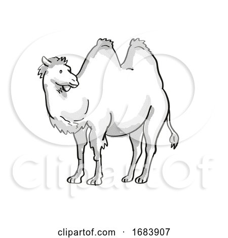Bactrian Camel or Camelus Bactrianus Endangered Wildlife Cartoon Mono Line Drawing by patrimonio
