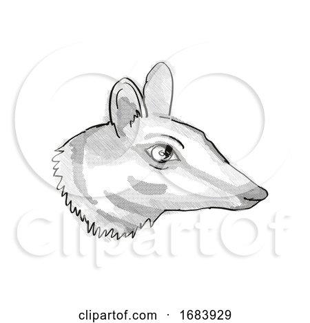 Numbat Endangered Wildlife Cartoon Retro Drawing by patrimonio