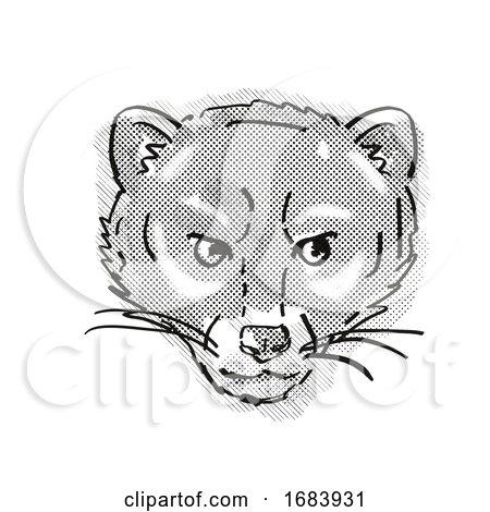 Malayan Civet or Viverra Tangalunga Endangered Wildlife Cartoon Retro Drawing by patrimonio