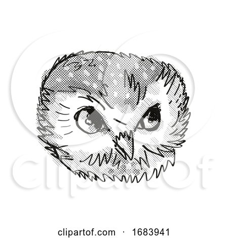 Northern Saw-Whet Owl Head Cartoon Retro Drawing by patrimonio