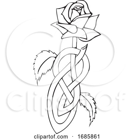 Celtic Knotted Rose by Morphart Creations