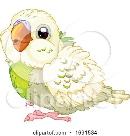 Cute Baby Budgie Parakeet Bird by Pushkin