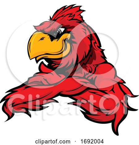 Red Cardinal Bird Mascot with Folded Arms by Chromaco