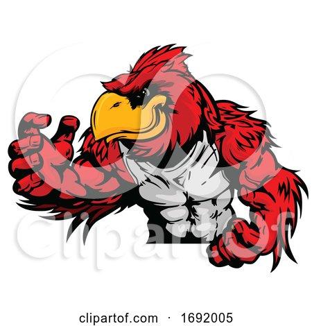 Muscular Red Cardinal Bird Mascot by Chromaco