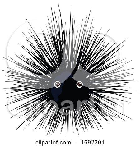 Cute Sea Urchin by Pushkin