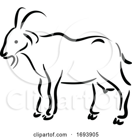 Calligraphy Styled Chinese Zodiac Goat by Vector Tradition SM