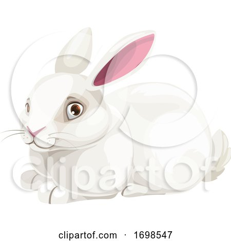 Chinese Zodiac Rabbit by Vector Tradition SM